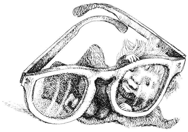 M. Ladigaitės iliustr.